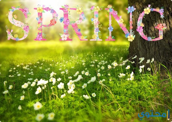صورة شعر عن الربيع , احلى اشعار عن الربيع