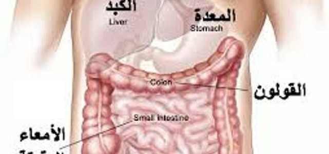 صورة علاج القولون العصبي , اعرف علاج القولون العصبى
