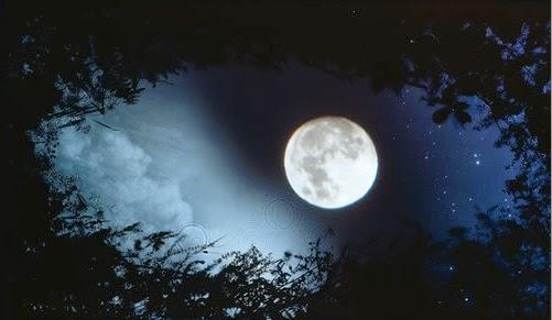 بالصور صور للقمر , اجمل صور للقمر 5924 1