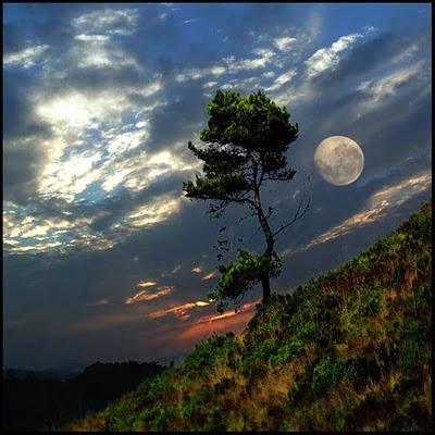 بالصور صور للقمر , اجمل صور للقمر 5924 7