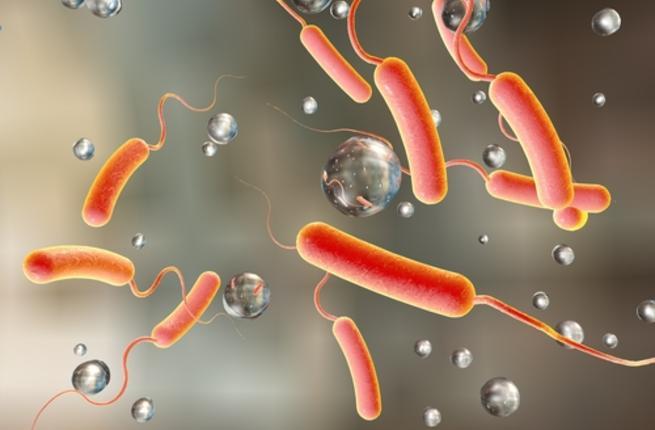 صور مرض الكوليرا , تعرف على مرض الكوليرا