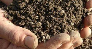 بالصور مكونات التربة , اعرف مكونات التربة 5960 2 310x165