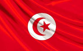 بالصور صور علم تركيا , اجمل صور لعلم تركيا 6008 5