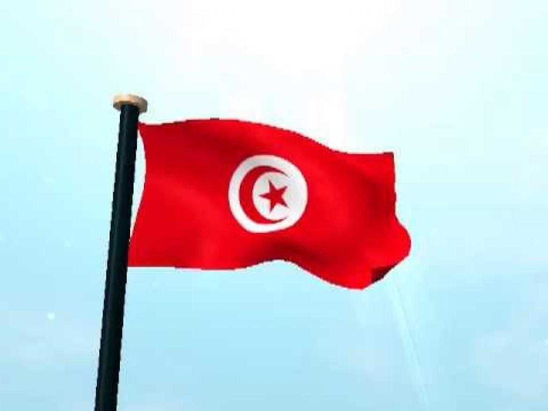 بالصور صور علم تركيا , اجمل صور لعلم تركيا 6008 8