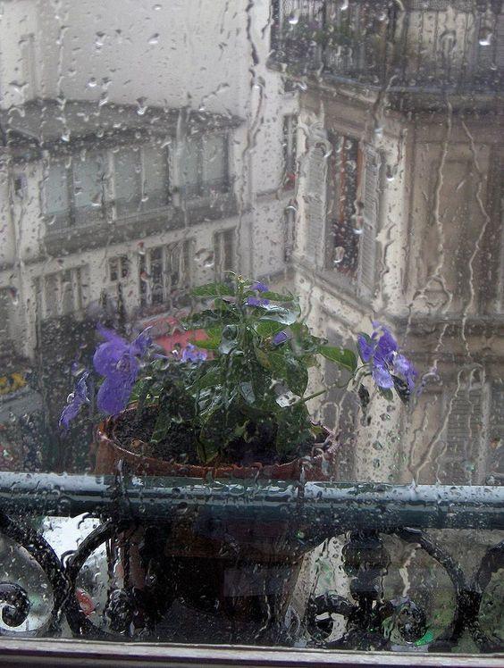 بالصور صور عن المطر , اروع صور عن الامطار 6125 6