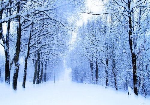 بالصور صور عن الشتاء , دفء الشتاء الجميل بالصور 4799 11