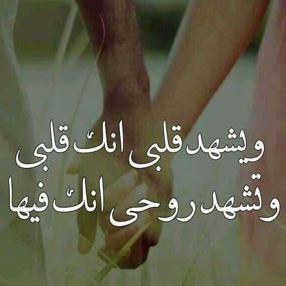 بالصور كلام في الحب والغرام , اجمل كلام حب وغرام للحبيب 6046 6