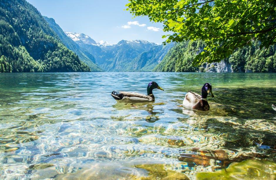 بالصور صور طبيعه , احلى صور تراها عينك للطبيعة