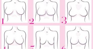 صورة انواع ثدي المراة بالصور , اشكال صدور النساء المختلفه 101 11 310x165