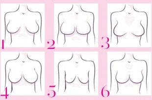 صور انواع ثدي المراة بالصور , اشكال صدور النساء المختلفه