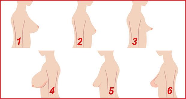 بالصور انواع ثدي المراة بالصور , اشكال صدور النساء المختلفه 101 4