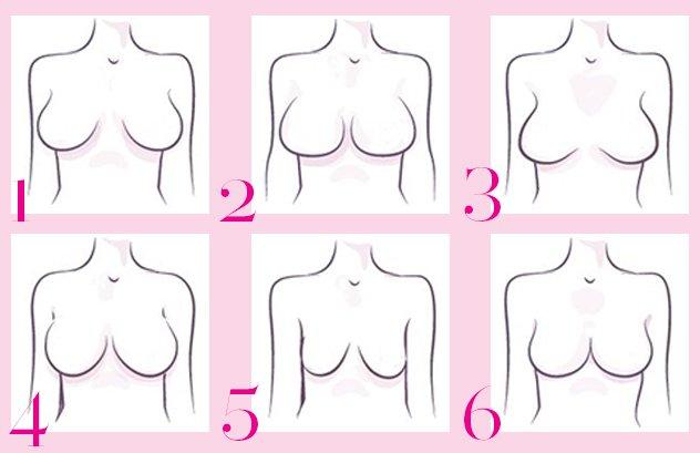 صورة انواع ثدي المراة بالصور , اشكال صدور النساء المختلفه