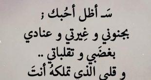 صورة اجمل ما قيل عن الحب , كلمات احاسيس وعشق رووعه 102 14 310x165