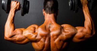 بالصور تمرين العضلات , اقوى حركات رياضيه للياقه 1268 3 310x165