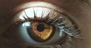 صوره صور عيون عسليه , اجمل لون عيون العسليات
