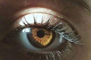 صورة صور عيون عسليه , اجمل لون عيون العسليات