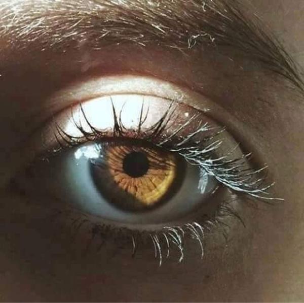 صور صور عيون عسليه , اجمل لون عيون العسليات