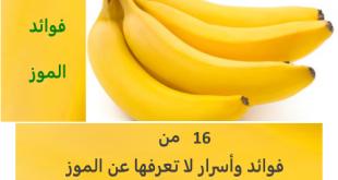 بالصور ماهي فوائد الموز , تعرف على منافع الموز 1614 1 310x165