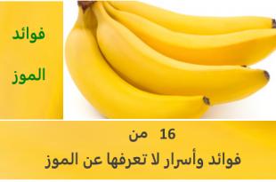 بالصور ماهي فوائد الموز , تعرف على منافع الموز 1614 1 310x205