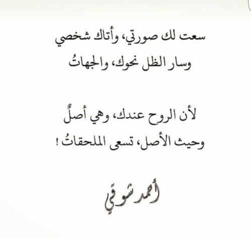 شعر احمد شوقي اجمل ابيات شعريه لامير الشعراء احبك موت