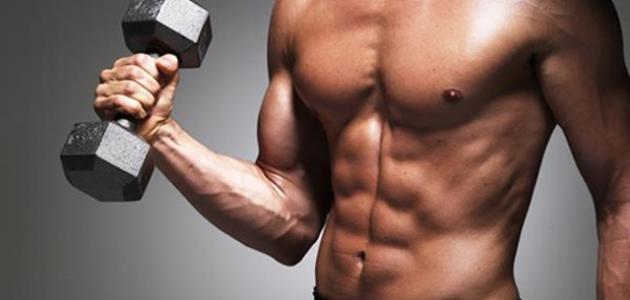 صورة كم عدد عضلات جسم الانسان , معلومات عن جسم الانسان