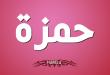 بالصور معنى اسم حمزة , اجمل صور اسم حمزه ومعناه 2410 1 110x75