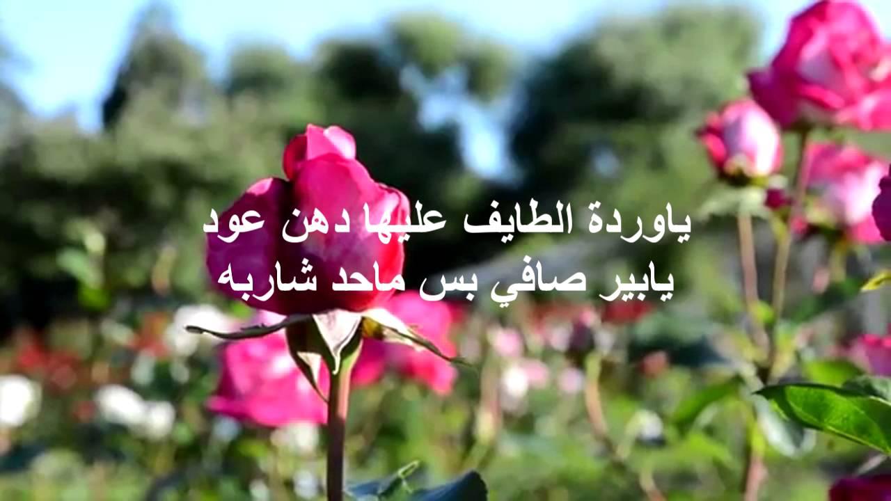 بالصور كلمات عن الورد , الورد واجمل ماقيل فيه 2496 3