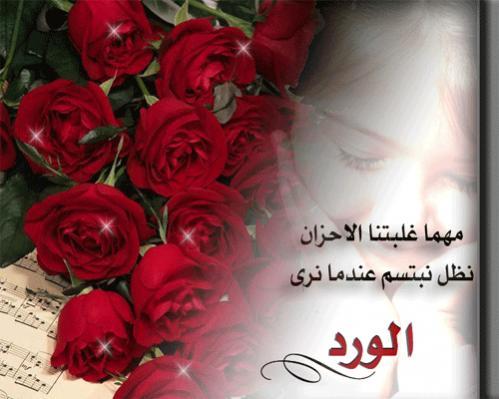 بالصور كلمات عن الورد , الورد واجمل ماقيل فيه 2496 9