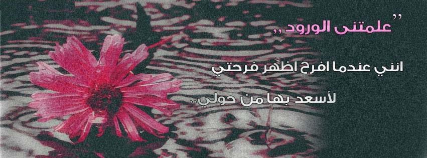 بالصور كلمات عن الورد , الورد واجمل ماقيل فيه