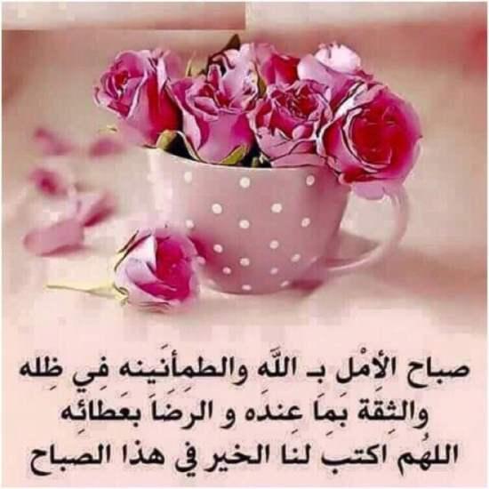 بالصور صور صباح الخير , اجمل صور صباح الخير 2512 6