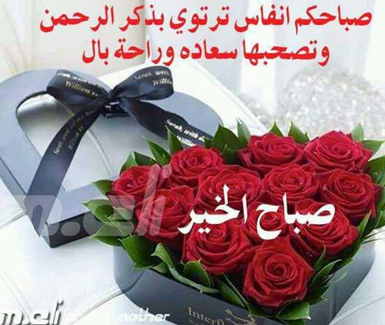 بالصور صور صباح الخير , اجمل صور صباح الخير 2512 9