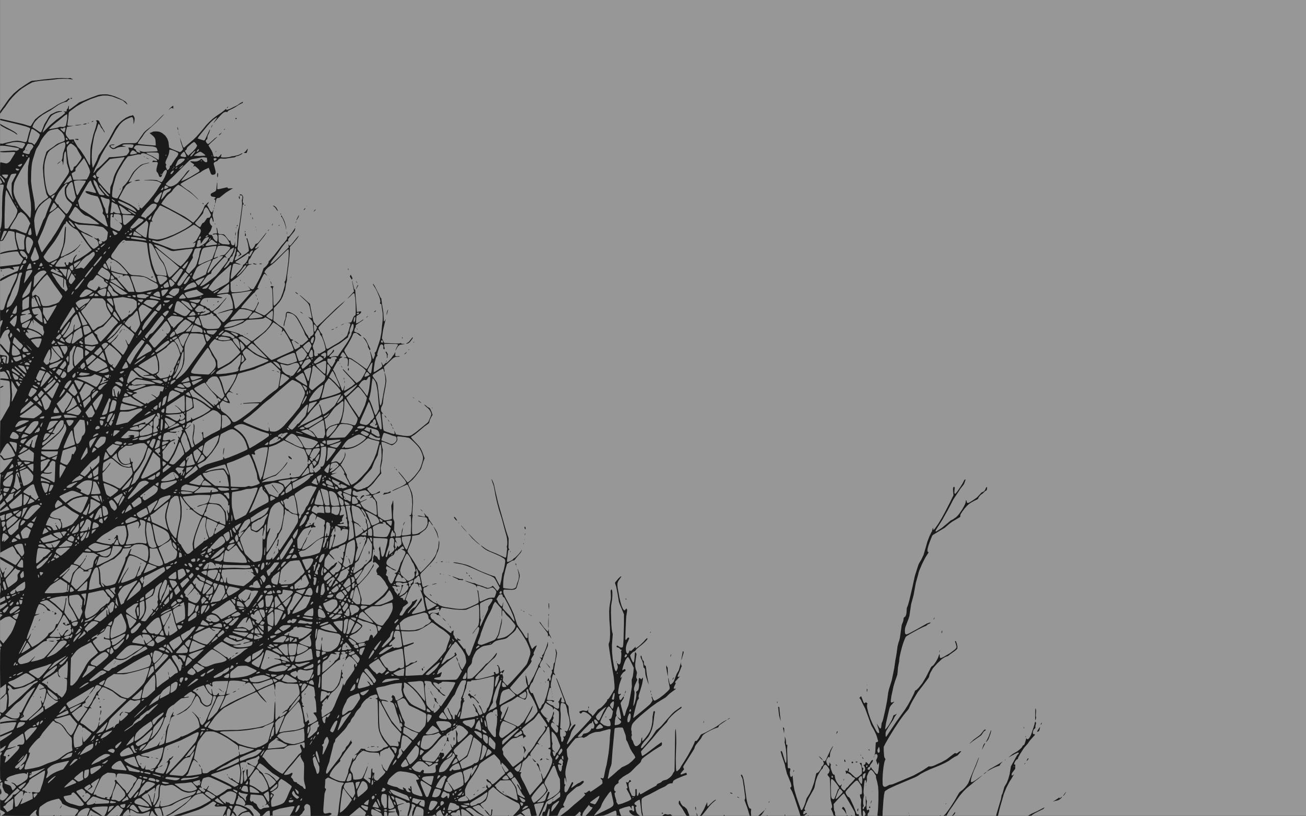 صور خلفيات رماديه , اجمل خلفيات باللون الرمادي