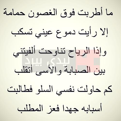 صور شعر عربي فصيح , اجمل ابيات الشعر العربي الفصيح