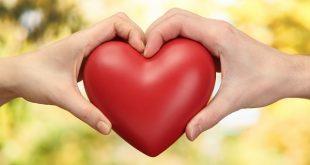 صورة نسبة الحب , طريقة قياس تسبة الحب 4391 1 310x165