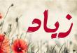 بالصور معنى اسم زياد , تفسير ومعانى مختلفه لاسم زياد 4410 2 110x75