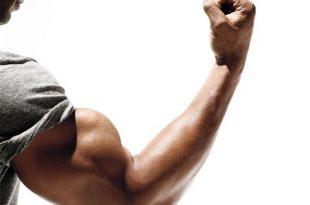 صورة تمارين العضلات , افضل تمارين لتقويه عضلاتك