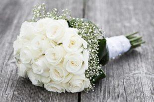صور صور ورود طبيعيه , اجمل اشكال الزهور الطبيعية