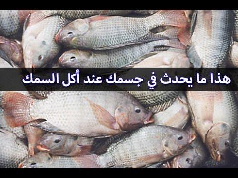 صورة فوائد السمك , فوائد صحيه للاستفاده من الاسماك