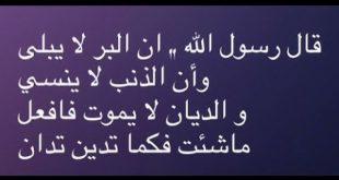 صورة قصص وعبر اسلامية , اروع الروايات والحكم الاسلامية