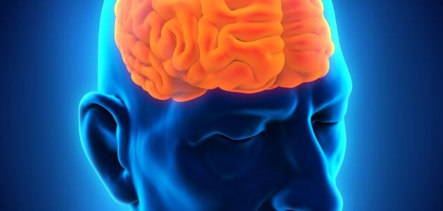 صورة اعراض سرطان الدماغ , مقدمات سرطات الدماغ