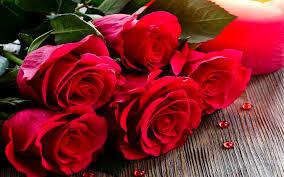 صور صور ورد رومانسي , الورود الرومانسية بالصور