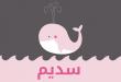 صور معنى اسم سديم , ما معنى اسم سديم في اللغة العربية