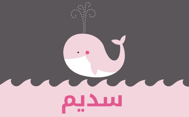 صورة معنى اسم سديم , ما معنى اسم سديم في اللغة العربية