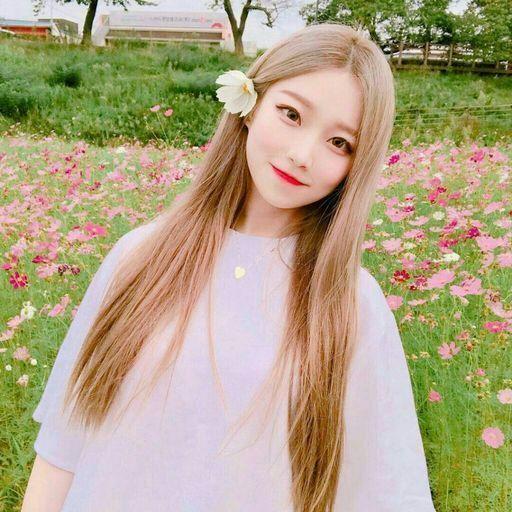 صورة صور بنات كوريات , تعرف على الكوريات بالصور