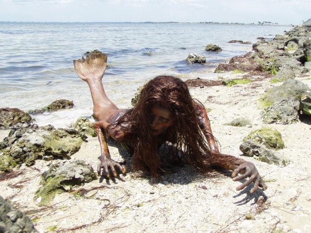 بالصور صور عروسه البحر , صور حوريات البحر 652 5