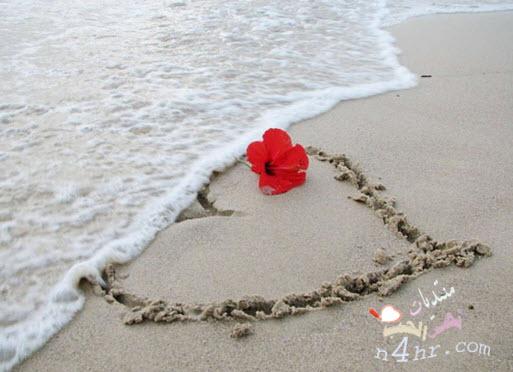 بالصور اشعار في الحب , اجمل كلام الحب 2134 9
