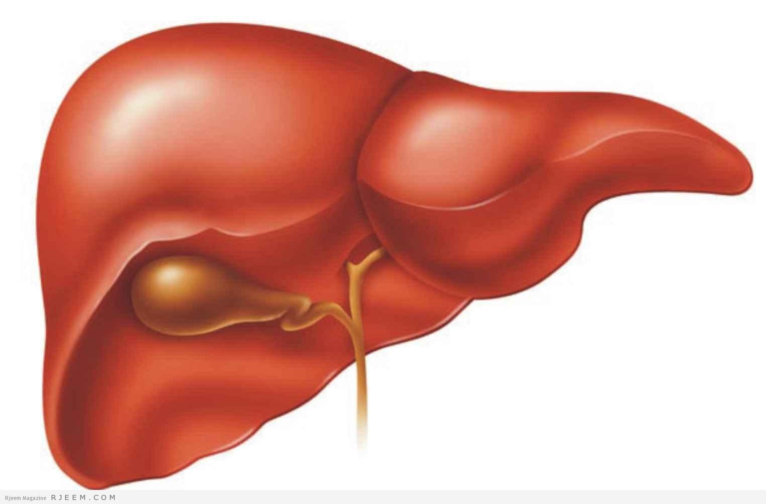 بالصور مرض الكبد الوبائي , امراض العصر و اعراضها 271 2