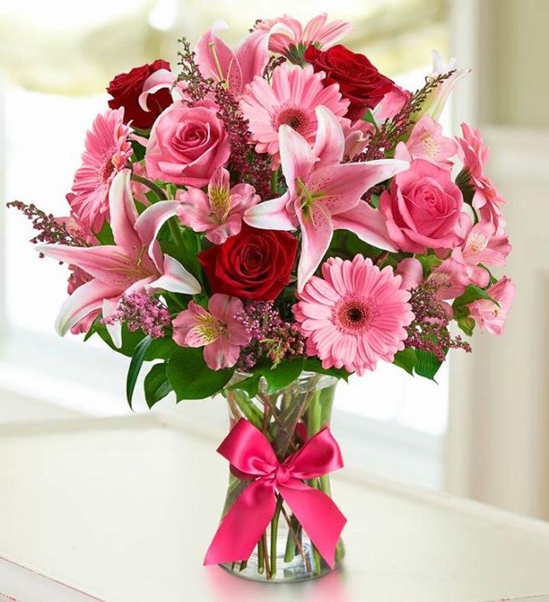 بالصور صور عن الورد , الجمال الطبيعى فى صور الورود 285 1