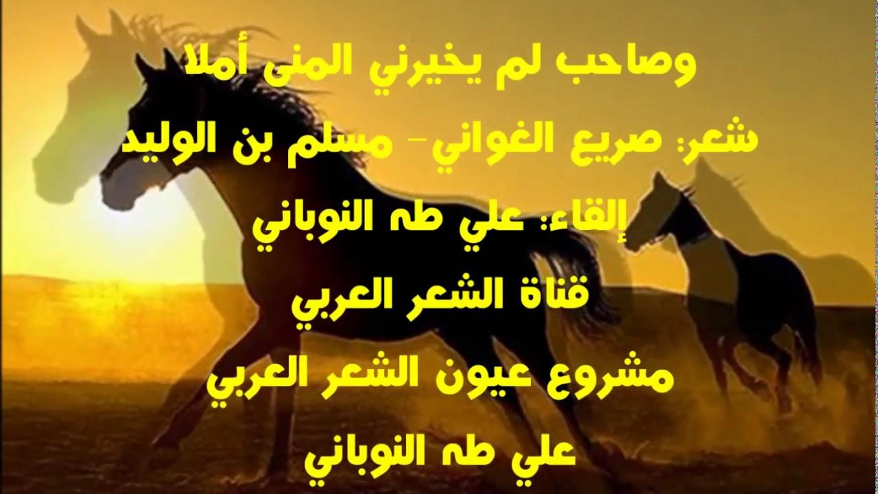 بالصور شعر مدح الصديق , الصداقه و كلمات لها ضجيج للصديق 326 11