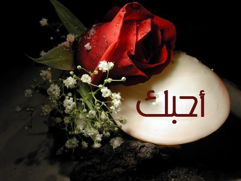 بالصور صور حب روعه , اجمل الصور الرومانسية 3768 7